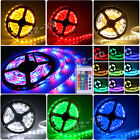 5M 300 LED 3528 SMD Strip Light Reel Ribbon Tape Day/Warm/Cool White Red Blue UK