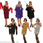 Adult Woman's Fringe Style 1920's Flapper Girl Fancy Dress Costume PS