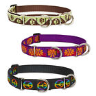 "Lupine Martingale Combo Collars 1"" Width Made in the USA Lifetime Guaranteed"