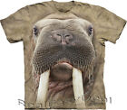 Child WALRUS FACE Seal The Mountain T Shirt All Sizes From 4 -14 Years 15-3613