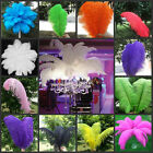 Wholesale 10/50/100pcs High Quality Natural Ostrich Feathers 6-24inch/15-60cm