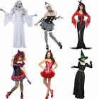 Adult Halloween Fancy Dress Outfit Ladies Costume Wig Stockings Tutu Tights New