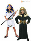 Boys Egyptian Pharaoh King Fancy Dress Book Week Costume Historical Kids Outfit