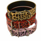 new leopard print dog collars  different sizes REAL LEATHER HIGH QUALITY