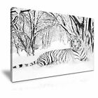 NEW ANIMAL Tiger 10 Canvas Framed Printed Wall Art ~ More Size