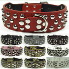 Spiked Studded Leather Dog Collar Large Dog Pitbull Terrier Rottweiler S M L XL