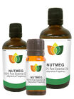 100% Natural Nutmeg Essential Oil - Multi Size, FREE P&P (Aromatherapy)