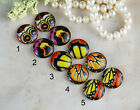 12mm 16mm 20mm cab Handmade butterfly wing Black Red Photo glass cabochon 12B012
