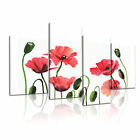 FLOWER Poppy 9 Canvas 4A-LH Framed Printed Wall Art ~ 4 Panels