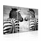 ANIMAL Zebra 14 Canvas 3A Framed Printed Wall Size ~ 3 Panels