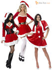 Adult Ladies Sexy Fever Miss Santa Costume Womens Christmas Fancy Dress Outfit