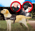 Reflective Safety Dog Harness Velcro patches SERVICE DOG Vest Padded IN TRAINING