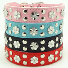 New Pink Blue Black Red Leather Studded Flowers Pet Dog Puppy Collar Necklace
