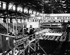 1899 CONEY ISLAND CLUB HOUSE BOXING RING PHOTO Vintage