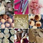Flowers, Seed Pods, Eggs, Mushrooms, Leaves & Shells for crafts / wreaths