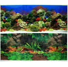 "Aquarium Fish Tank Background H 20"" picture 2 sided image wall Decor 09 home new"