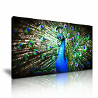 Peacock Canvas Animal Modern Home Office Wall Art Deco