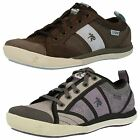 Ladies Cushe Casual Trainers Pebble