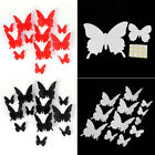 3D DIY Wall Sticker Stickers Butterfly Home Decor Room Decorations New Trusty