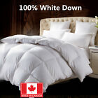 100% Cotton White Down Duvet Made in Canada White Color