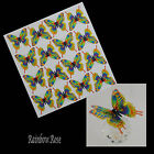 Transparent Film Butterfly #26 YELLOW RAINBOW transparency 3D for suncatcher etc