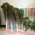 Внешний вид - Wholesale ! beautiful natural peacock feathers eyes 10-40 inches/25-100 cm