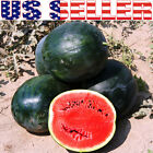 15+ ORGANICALLY GROWN Florida GIANT 50 LB Watermelon Seeds Super Sweet Large Big