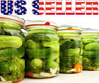 50+ ORGANICALLY GROWN National Pickling Cucumber Seeds Sweet Heirloom NON-GMO