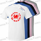 Made in Wales T-SHIRT Kids Top, Brand new Tee Shirts, best gifts for Boys Girls