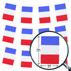 FRENCH BASTILLE BUNTING 33FT COUNTRY FRENCH NATIONAL FLAG PARTY DECORATION PVC