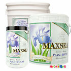 Maxsea All Purpose Plant Food 16-16-16 Powder Seaweed Fertilizer 1.5lb 6lb 20lb