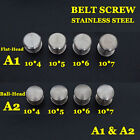 【A1A2】50pc Stainless Steel Belt Screw Saddle Tack Chicago Screw Leathercraft