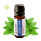 Peppermint Essential Oil - ARAMACS Brand