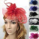New Women Fascinator Feather Hair Accessory Hat Clip Pillbox Veil Cap Party