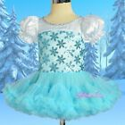 Princess Elsa Frozen Disney Costume Cosplay Fancy Party Pettidress Sz 12m-6 #038