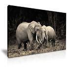Matriarch Elephant and Herd Canvas Framed Printed Wall Art ~ More Size