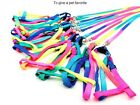 100 pcs Pet Dog Leash Small Puppy Cat Rabbit Kitten Nylon Leash Harness Collar