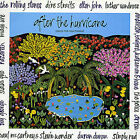 After the Hurricane by Various Artists (CD, Dec-1989, Chrysalis Records)