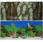 "Aquarium H 20"" Fish Tank Background  picture 2 sided image Bark wall Decor sea"