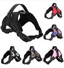 Extra Big Large Medium Dog Harness Soft Vest Puppy Pet Walk Out Hand Strap