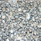 Silver Stone Pebbles 4-8mm Home Garden Wedding Various Weights Postage Inclusive