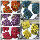 "144 Craft 0.5"" wide Mini Paper Roses Wedding DIY Party Flowers WHOLESALE SALE"