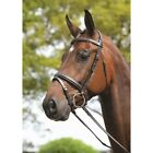 Kincade Padded Headpiece Flash Bridle ALL SIZES & COLOURS