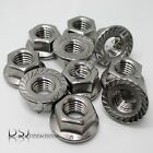 Serrated Flange Nuts. A2 Stainless Steel Hexagon Flanged. M5  M6  M8  M10