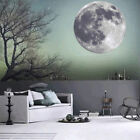 30cm*30cm Luminous Moon Earth Planet Wall Stickers Glow in the Dark Room Decor