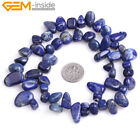 Dyed 12x16mm Freefrom Gemstone Blue Lapis Lazuli Beads Strand Jewelry Making 15""