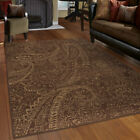 Brown Paisley Leaves Petals Curls Transitional Area Rug Floral 3512