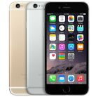 Apple iPhone 6 16GB/64GB (Sprint) in Space Gray/Silver/Gold Variation Fast Ship