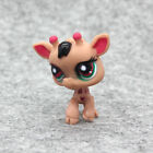 24 Style Littlest Pet Shop LPS Hasbro Baby Kid Toy Preschool Animal Pretend Play