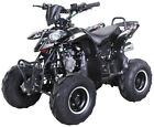 "Quad 125 ccm Miniquad ATV Kinderquad Pocketbike Kinderquad Jugend ""Alpha"""